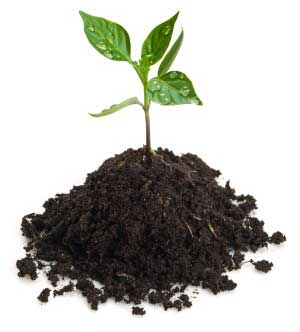 Soil solutions for Soil and plant lab