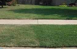 liquid lawn aerator Example