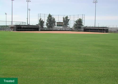 Sports field grass treatment example